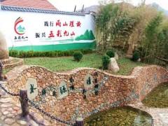 美丽乡村建设引领农村发展新风尚 临朐九山镇打造乡村振兴新样板