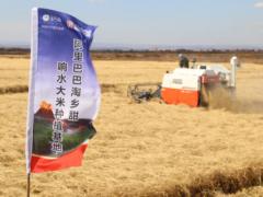 阿里数字农业事业部亮相 将建1000个农业基地开创助农新模式