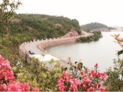 """浙江永康: 农村公路""""+""""出经济创新新模式"""