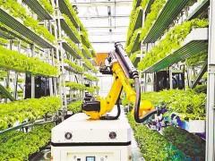 农业农村数字化转型助推乡村振兴