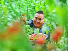 中和农信:订单农业步入正轨,助力乡村发展特色产业